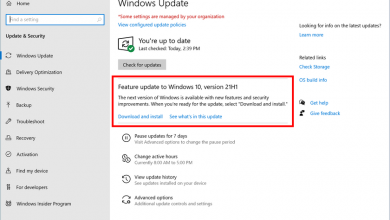 Photo of It will be called Windows 10 May 2021 Update and there is already an RTM version